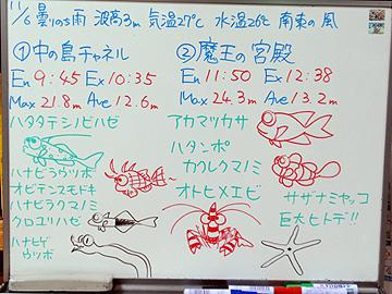 宮古島 ログデータ 2009/11/6
