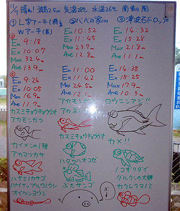 宮古島 ログデータ 2009/11/7
