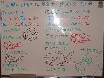 宮古島 ログデータ 2009/11/10