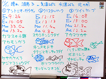 宮古島 ログデータ 2009/11/11