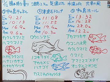 宮古島 ログデータ 2009/11/12