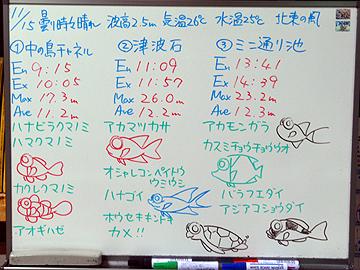 宮古島 ログデータ 2009/11/15