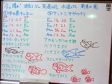 宮古島 ログデータ 2009/11/20