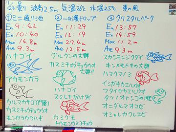 宮古島 ログデータ 2009/11/23