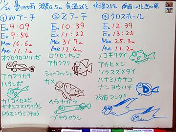 宮古島 ログデータ 2009/11/24