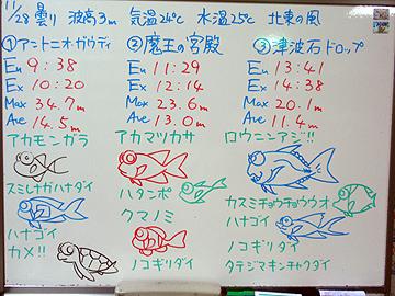 宮古島 ログデータ 2009/11/28