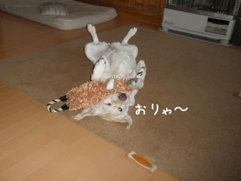 1_20110331220240.jpg