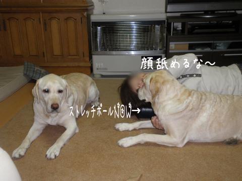 1_20110521225332.jpg