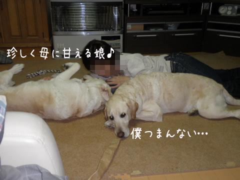 2_20110521225331.jpg