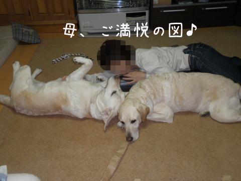 3_20110521225331.jpg