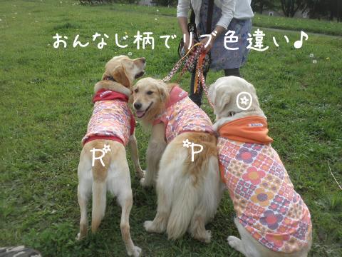 3syokudango.jpg