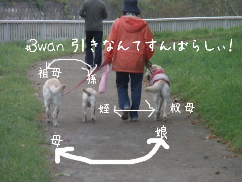 3wan_20111008232725.jpg