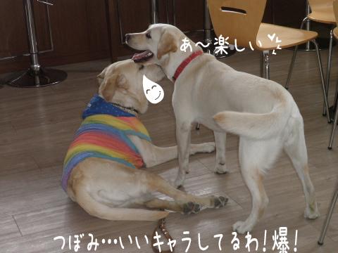4_20110604231014.jpg