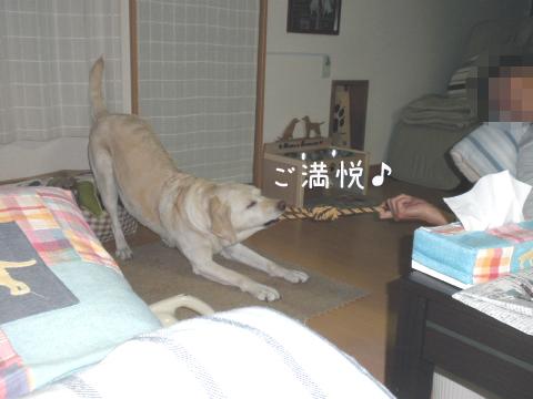asobo2_20110507133551.jpg