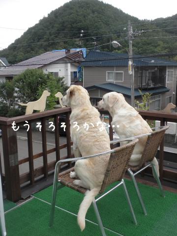 baru2_20110910212506.jpg