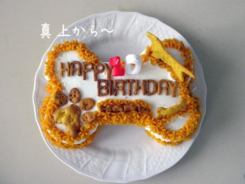 cakeue.jpg