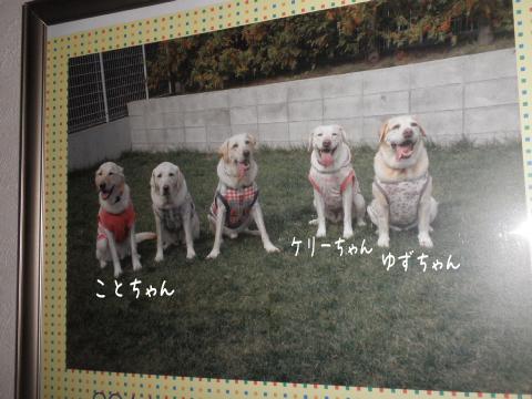 cal_20111005213738.jpg