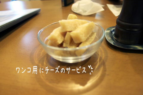 cheese_20110914235652.jpg