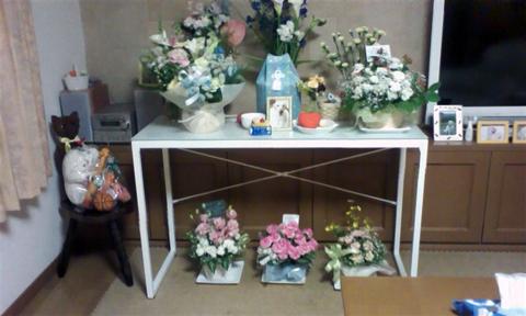 fuuta_20110507134159.jpg