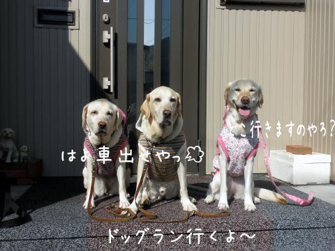 genkan_20111009222938.jpg