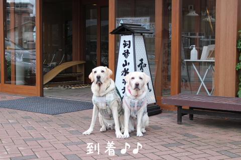 genkanmae_20110920222110.jpg