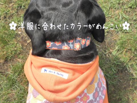 hihumikubiwa_20110503204144.jpg