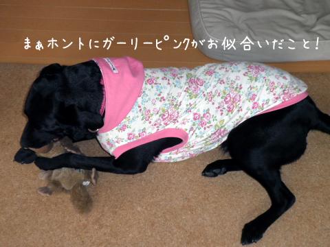 huku_20110418154608.jpg