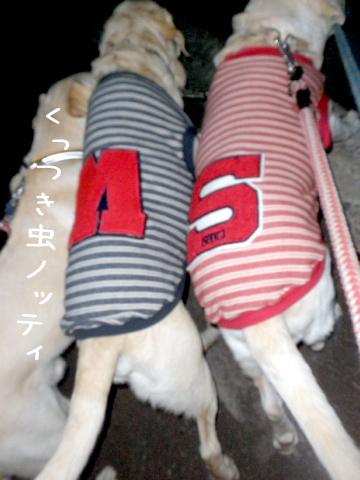kaerimiti_20111024225820.jpg