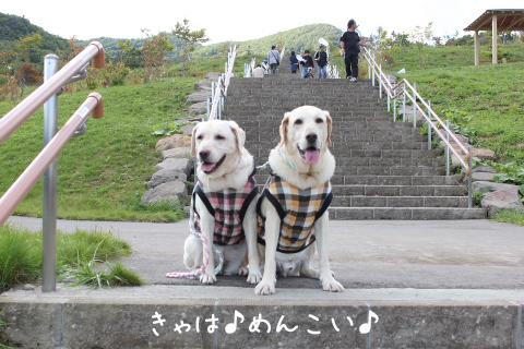 kaidan_20110925220756.jpg