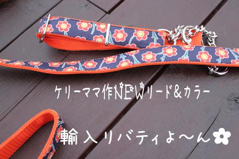 kubiwa1_20110523004013.jpg