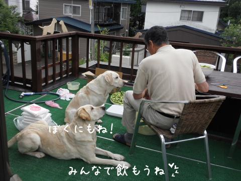 maru_20110625121334.jpg