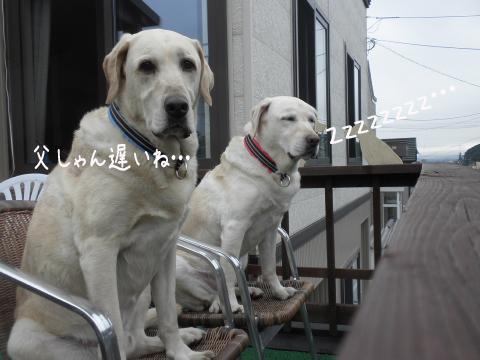 marubaru_20110715235616.jpg