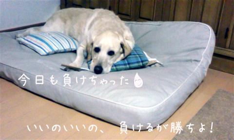 marubed_20110728000345.jpg