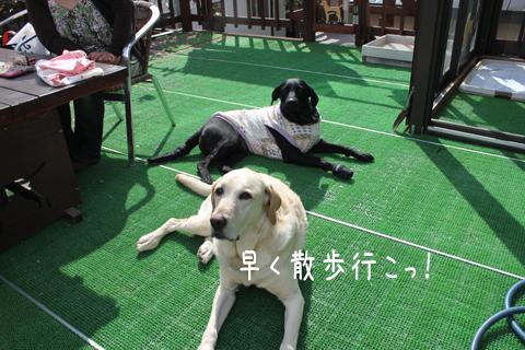 maruhihumi_20110605205209.jpg