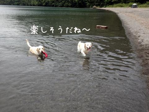 marukeri2_20110719224622.jpg