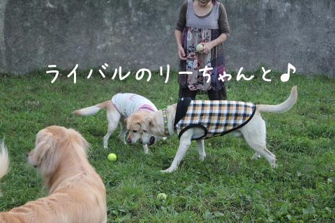 marulee_20110925221707.jpg