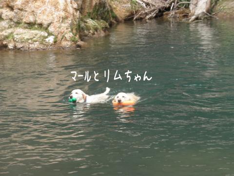 marurimu_20110627000436.jpg