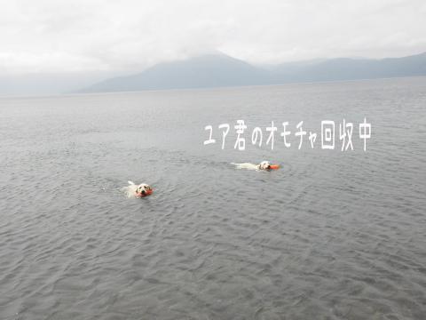 marusyeri2_20110707231226.jpg