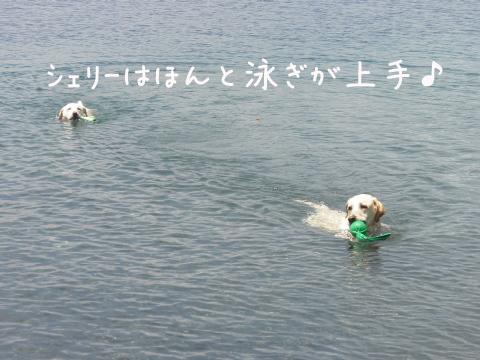 marusyeri_20110707223723.jpg