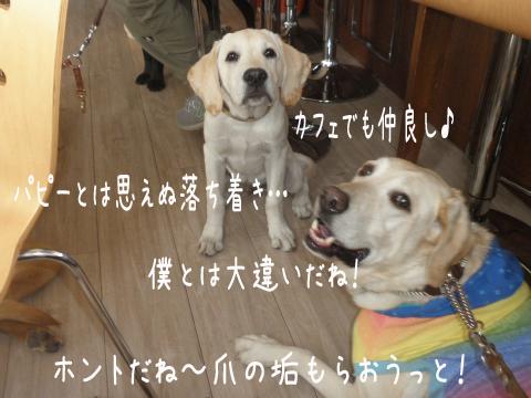 marutao3.jpg
