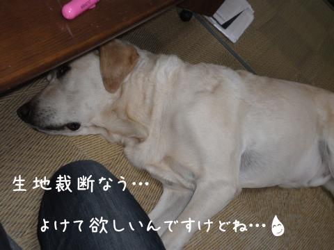 maruwasitu_20110909223602.jpg