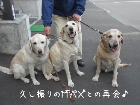 max_20110518221400.jpg