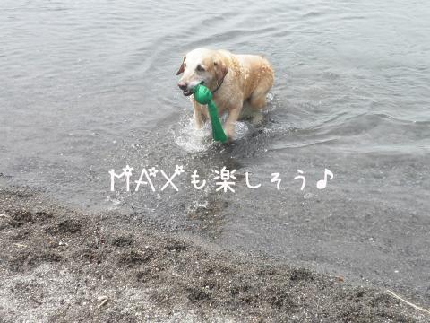 max_20110719225003.jpg