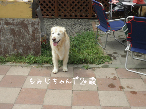 momizi_20110710202830.jpg