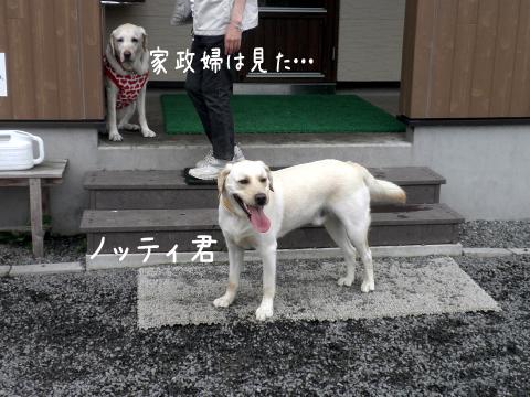 notei_20110719000434.jpg