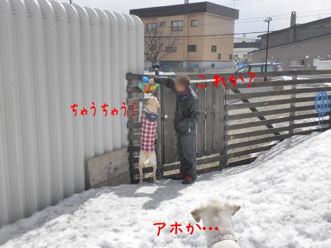 omotya_20110403060812.jpg