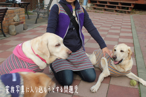 osoroi_20111028224704.jpg