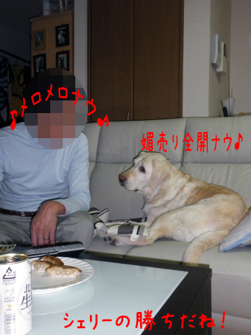 otto_20110412220938.jpg