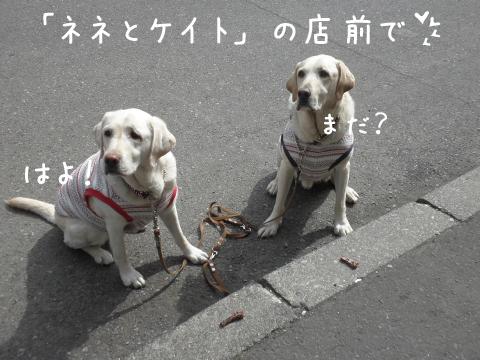 oyatu_20110601223357.jpg