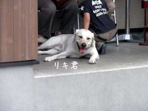 riki_20110719001112.jpg